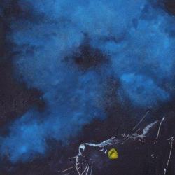 11-Le rêve du chat noir