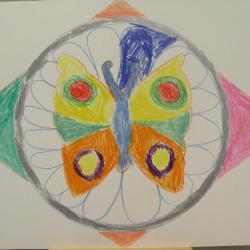 27b franck papillon